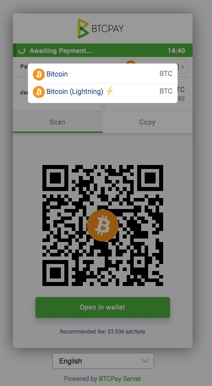 BTCPay payment window
