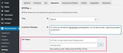 BTCPay API Token