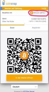 crop 19 35 369 686 0 Bitcoin Zahlung Bezahlseite 161x300 1