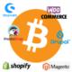 Bitcoin Zahlungsanbieter im Vergleich